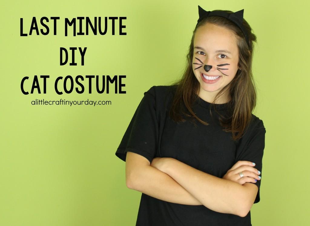 Last_Minute_DIY_Cat_Costume