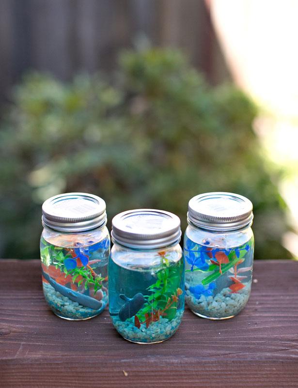3-mason-jar-aquarium