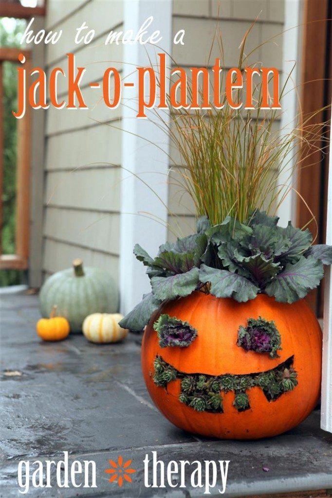 How-to-Make-Jack-o-Planterns-682x1024