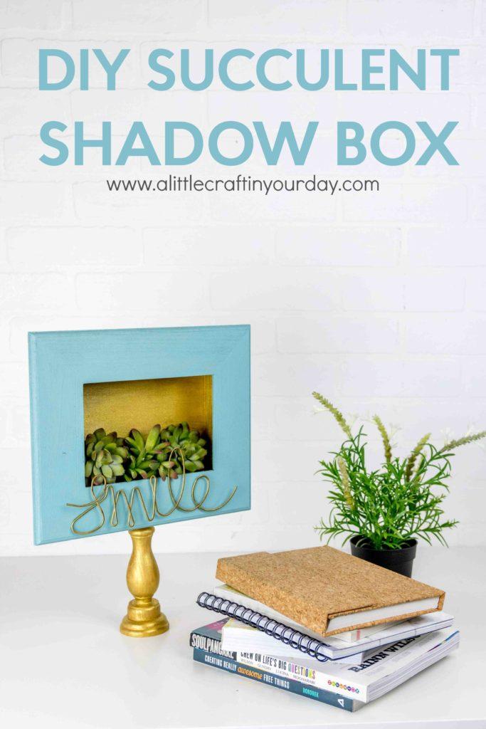 diy_succulent_shadow_box