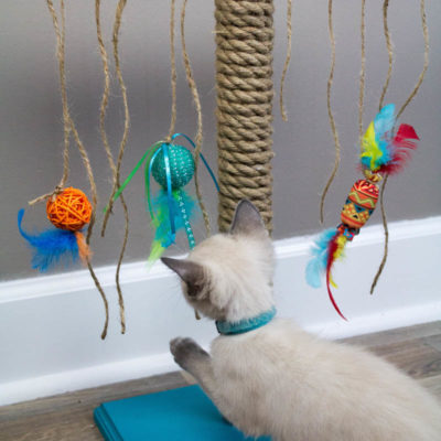 DIY Cat Scratching Post thumbnail