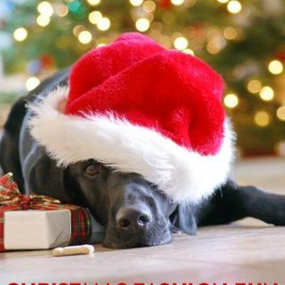 Christmas Fashion Fun – Accessories & More thumbnail
