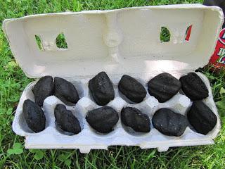 Eggs-tra Special Campfire Starter