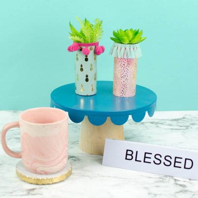 Trendy Toilet Paper Roll Craft- Toilet Paper Roll Planters thumbnail