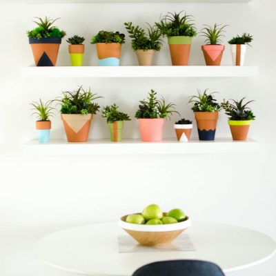 DIY Succulent Wall thumbnail
