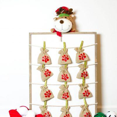 DIY Advent Calendar for Dogs thumbnail