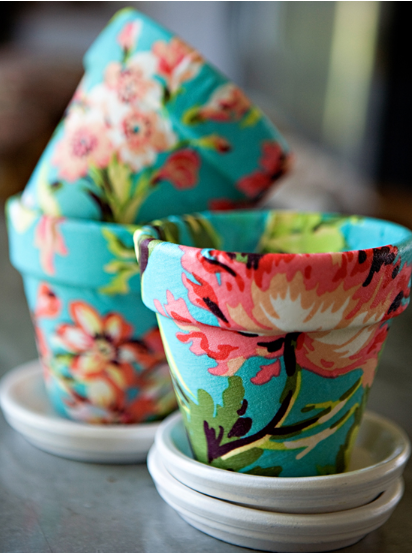 A beautiful and colorful flower pots