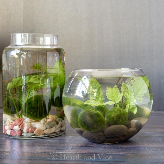 DIY indoor water options – a small craft tool for your day