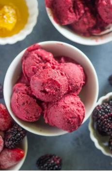 sugar-free berry frozen yogurt