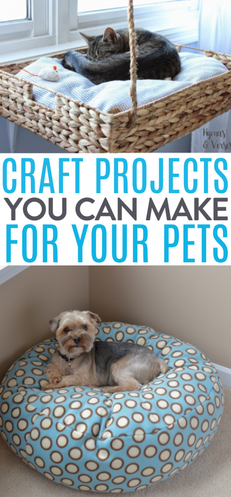 Craft Projects You Can Make For Your Pets roundups