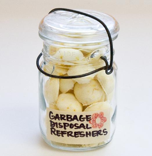 Homemade lemoney refresher for bad garbage disposal smell