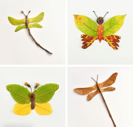 autumn leaf butterflies and dragonflies