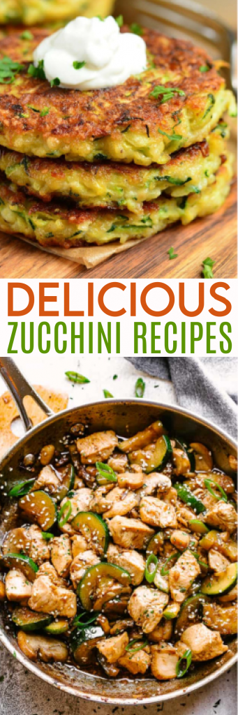 delicious zucchini recipes roundup