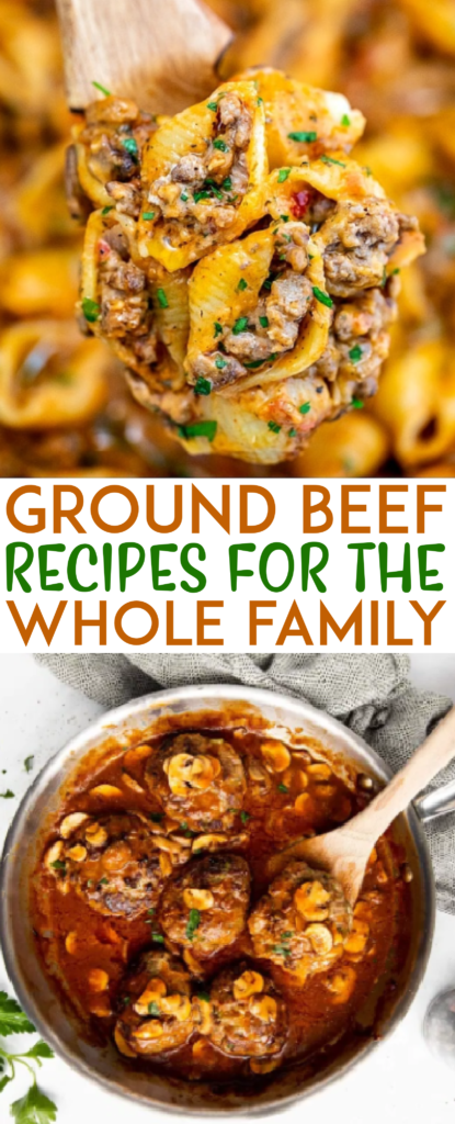 Ground Beef Recipes for the Whole Family Roundups
