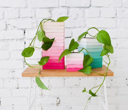 A trendy and colorful ombre popsicle stick planter or vase