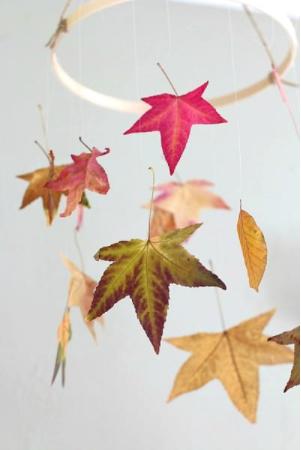 Preserve leaves mobile