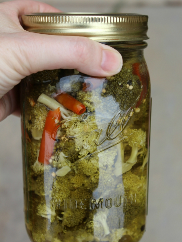 easy and healthy spicy pepper pickled broccoli florets