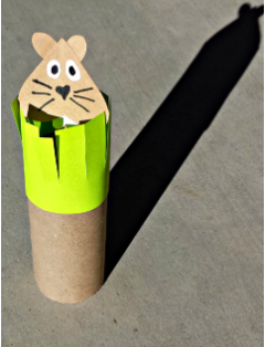 groundhog made from paper and toilet paper roll