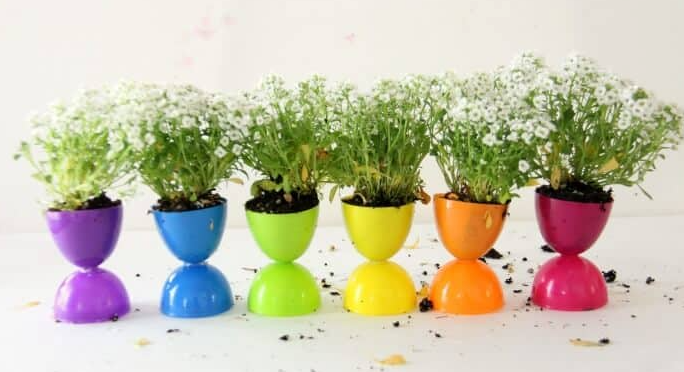 Flower pots made from plastic Easter egg with white flowers coming out of the pots