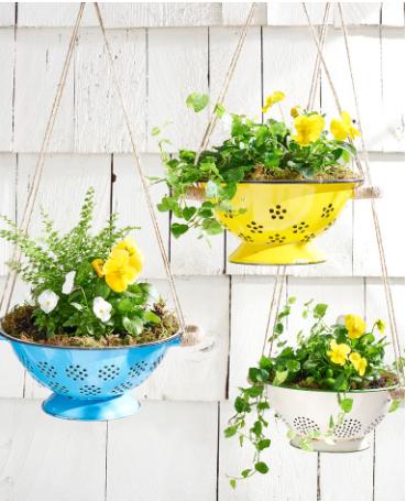 Turn a colander into a unique and beautiful planter garden decor