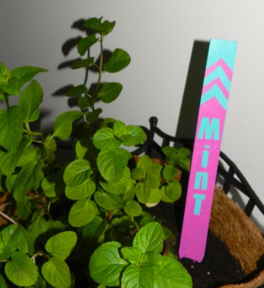 Homemade garden marker made of paint sticks summer craft