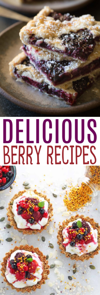 Delicious Berry Recipes Roundups
