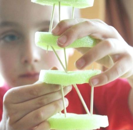 Construindo estruturas de macarrão para piscina com palitos de dente