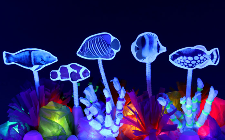 A tropical light up coral rift glow in the dark kids summer craft