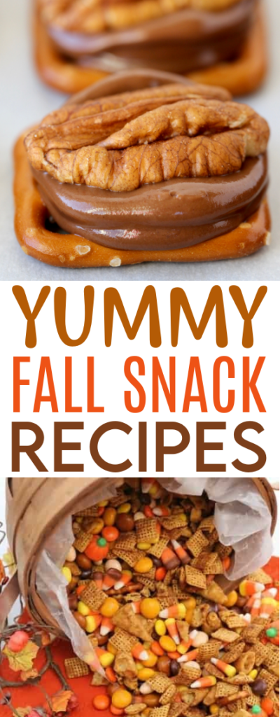 Yummy Fall Snack Recipes roundup